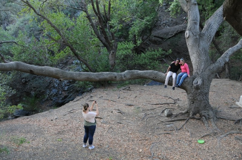 Photography on reservoir Canyon Trail on Saturday. Sabrina and Devin in tree. Jessamyn as photographer.